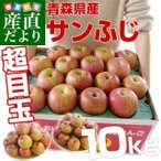 送料無料 青森県産 サンふじりんご 大玉 約10キロ(22から32玉前後)市場発送 りんご リンゴ 林檎