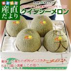 送料無料 熊本県産 JA熊本うき クインシーメロン 3から4L 優品 5キロ箱(3から4玉)市場発送