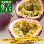 鹿児島県産 JAそお鹿児島 パッションフルーツ 2Lから3Lサイズ 1.2キロ(9から12玉)