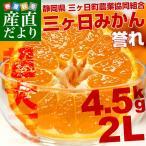 送料無料 静岡県産 JAみっかび  三ケ日みかん 誉れ 大玉 2Lサイズ 4.5キロ ミカン 蜜柑 市場スポット