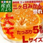 送料無料 静岡県産 JAみっかび  三ケ日みかん 誉れ 大玉 Lサイズ 5キロ ミカン 蜜柑 市場スポット