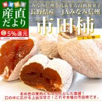 長野県産 JAみなみ信州 市田柿 (干し柿) 340g化粧箱(8粒入り) 市場発送スポット