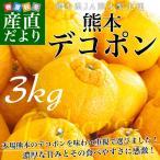 送料無料 熊本県産 JA熊本果実連 露地栽培デコポン 2LからLサイズ 3キロ (12から15...
