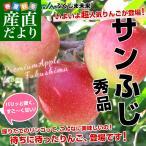 送料無料 福島県より産地直送 JAふくしま未来  サンふじりんご 特秀品 約2.5キロ(7玉から10玉)  林檎 りんご リンゴ