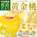 福島県より産地直送 JAふくしま未来 ミスピーチ「黄金桃」約2キロ(5玉から8玉) もも モモ