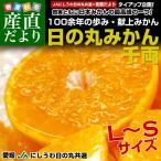 送料無料 愛媛県より産地直送 JAにしうわ 日の丸みかん 千両 LからSサイズ 5キロ(40玉から60玉) 蜜柑 ミカン