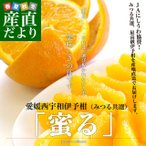 柑橘 - 送料無料 愛媛県より産地直送 JAにしうわ・みつる共選 いよかん「蜜る」 2Lから3Lサイズ 10キロ(30から40玉) 伊予柑 イヨカン