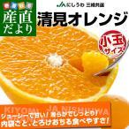 送料無料 愛媛県より産地直送 JAにしうわ三崎共選 清見オレンジ 小玉 MからSサイズ 5キロ おれんじ 柑橘 みかん
