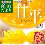 送料無料 愛媛県より産地直送 JAにしうわ 甘平(かんぺい) 優品 3LからLサイズ 5キロ(16から28玉)