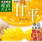 愛媛県より産地直送 JAにしうわ 甘平(かんぺい) 秀品 2Lから3Lサイズ 3キロ(10から12玉)