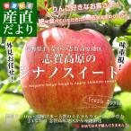 送料無料 長野県より産地直送 JAながの 志賀高原のシナノスイート ご家庭用 約5キロ(13から18玉) 林檎 りんご リンゴ