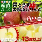 お一人様2箱まで! 送料無料 JAつがる弘前 葉とらず太陽ふじりんご 糖度13度以上 約3キロ(9から13玉) 林檎 お歳暮 御歳暮