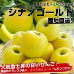送料無料 青森県より産地直送 JAつがる弘前 シナノゴールド 約3キロ×2箱(9から13玉×2箱)