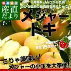 青森県より産地直送 JAつがる弘前 弘前のりんご メジャー トキ 3キロ (小玉 13玉入り) 送料無料 林檎 りんご リンゴ