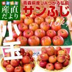 送料無料 青森県より産地直送 JAつがる弘前 サンふじリンゴ 小玉 10キロ(50から56玉入) 林檎 りんご リンゴ