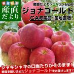 送料無料 青森県より産地直送 JAつがる弘前 ジョナゴールド CA貯蔵品 約3キロ(9から13玉) りんご 産直だより:クール便対応