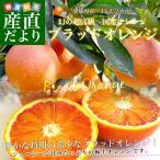 愛媛県より産地直送 JAえひめ南 ブラッドオレンジ 2Lから3Lサイズ 優品 2キロ(8から10玉) おれんじ たろっこ