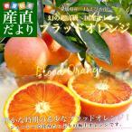 愛媛県より産地直送 JAえひめ南 ブラッドオレンジ 2Lから4Lサイズ 秀品 3キロ(18から20玉)おれんじ たろっこ
