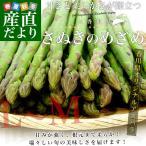 sanchokudayori_1801002031