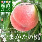 送料無料 山形県より産地直送 山形県東根市 厳選農家 やまがたの桃 約5キロ (13から20玉) 桃 Peach もも