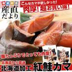 雅虎商城 - 送料無料 北海道から直送 北海道加工 脂たっぷりの紅鮭カマ(ロシア産) 500g (約4から7切)×2袋セット