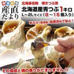 北海道産 青つぶ 焼きつぶ用(あぶら処理済み・ボイル)Lから2Lサイズ 約1キロ(8から15個入り)