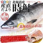 北海道から直送 北海道産 時鮭(トキシラズ)<半身フィーレ:甘塩> 900g前後 送料無料 ときさけ シャケ