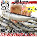 送料無料 北海道産 超特大いわし丸干し 巨大キングサイズ 20尾セット 2キロ (1尾100g以上×20尾)