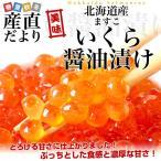送料無料 北海道産 いくら醤油漬け (ますこ) 約500g イクラ