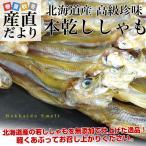 北海道から直送 北海道産 高級珍味 本乾ししゃも 4袋セット (25g×4P) 送料無料 柳葉魚 シシャモ