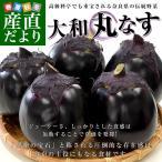 奈良県産 JAならけん 丸なす 秀品9から11玉 送料無料 まるなす 茄子 ナス 市場発送