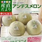 茨城県産 JA茨城旭村 アンデスメロン 4Lから2Lサイズ 5キロ箱 (3玉から5玉) 送料無料 市場スポット