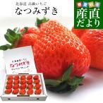 北海道より産地直送 高級いちご なつみずき 約300g(20粒または24粒)化粧箱入り イチゴ 苺 夏イチゴ