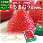 送料無料 福岡県より産地直送 JAくるめ あまおういちご EX 最上級品 エクセレント 420g(12粒から15粒) 苺 イチゴ 博多あまおう 久留米