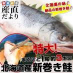 送料無料 北海道産 新巻き鮭 < 特大> 1尾 約3キロ さけ サケ