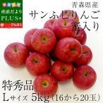 送料無料 青森県産 サンふじりんご 特秀品 Lサイズ 5キロ (18から20玉) ふじりんご ふじ 林檎