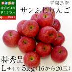 青森県産 サンふじりんご 特秀品 Lサイズ 5キロ (16玉から20玉) 送料無料 ふじりんご 林檎