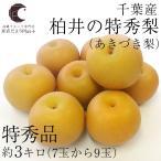 送料無料 千葉県産 柏井の特秀梨(あきづき)約3キロ(7玉から9玉)  梨 なし 和梨