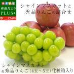 送料無料 シャインマスカットと秀品りんごの詰合せ 化粧箱 高級フルーツギフト ぶどう りんご