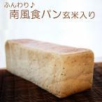玄米入り食パン MAZE(3斤)日時指定可 宅配便発送/海の町のパン屋さん 藻塩使用 ふんわりしっとり 保存料無添加