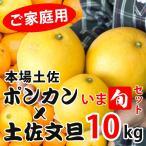 【あすつく対応】 訳あり 土佐文旦 土佐ポンカン いま旬セット 10kg 高知県産