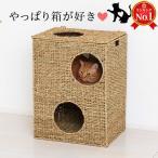 猫ちぐら 箱ボックス型 猫トンネル 猫ハウス 天然素材 猫つぐら カゴ籠