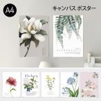 ポスター A4 (キャンバス素材) ボタニカルコレクションVo.2 花 植物 シンプル おしゃれ アートポスター アートプリント フォトポスター サンサンフー