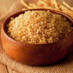 令和元年産 仁多米コシヒカリ一等米 玄米 30kg 送料無料 数量限定