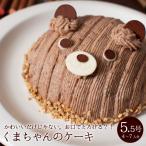 誕生日ケーキ キャラクター バースデーケーキ くまちゃんのケーキ 立体 デコレーション