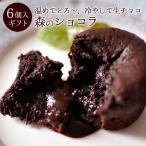ホワイトデー  2017 チョコ「森のショコラ6個入」 フォンダンショコラ