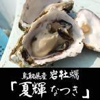 ギフトにもおすすめ! 漁獲量わずか10%のブランド牡蠣 天然岩牡蠣 夏輝(なつき)(生) 1個(400g前後) ×5個セット鳥取県産(送料無料)