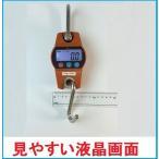 【あす楽対応】WCPクレーンスケール 100kg 超コンパクトデジタル吊りはかり 乾電池式【三方良し】吊はかり おすすめ