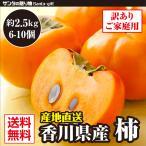 11月末終了 富有柿 超目玉価格 香川県産 2セット購入で合計約7kgお届け【1セット約2.5kg】香川県 柿(訳あり) | 高い糖度と食べごたえのある食感