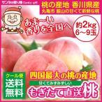 目玉価格 四国最大の桃の産地 飯山 香川県のもも 2kg お中元にも最適 産地直送 甘くて新鮮な四国の桃の画像